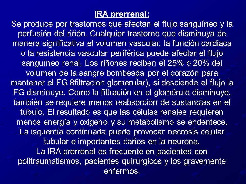 IRA prerrenal: Se produce por trastornos que afectan el flujo sanguíneo y la perfusión del riñón. Cualquier trastorno que disminuya de manera signific