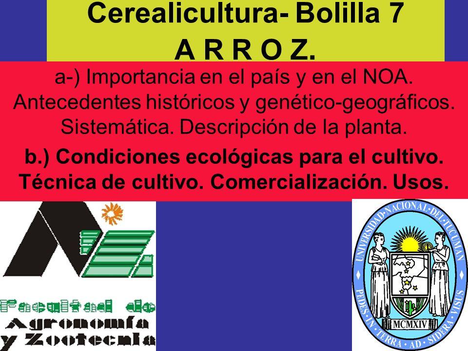Cerealicultura- Bolilla 7 A R R O Z. a-) Importancia en el país y en el NOA. Antecedentes históricos y genético-geográficos. Sistemática. Descripción