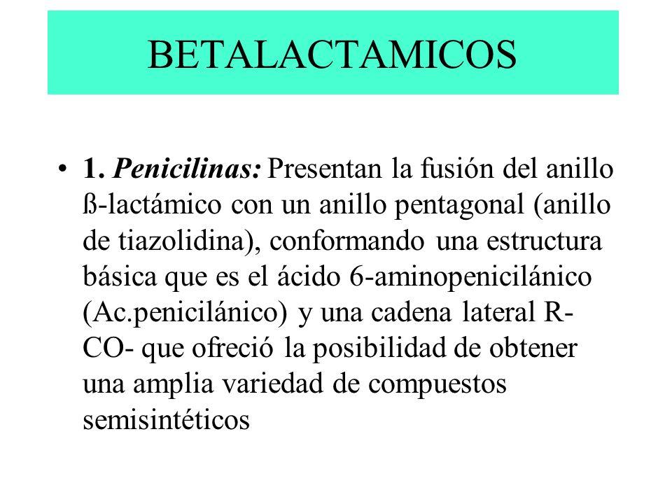 1. Penicilinas: Presentan la fusión del anillo ß-lactámico con un anillo pentagonal (anillo de tiazolidina), conformando una estructura básica que es