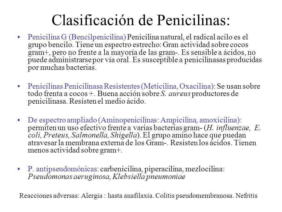 Clasificación de Penicilinas: Penicilina G (Bencilpenicilina) Penicilina natural, el radical acilo es el grupo bencilo. Tiene un espectro estrecho: Gr