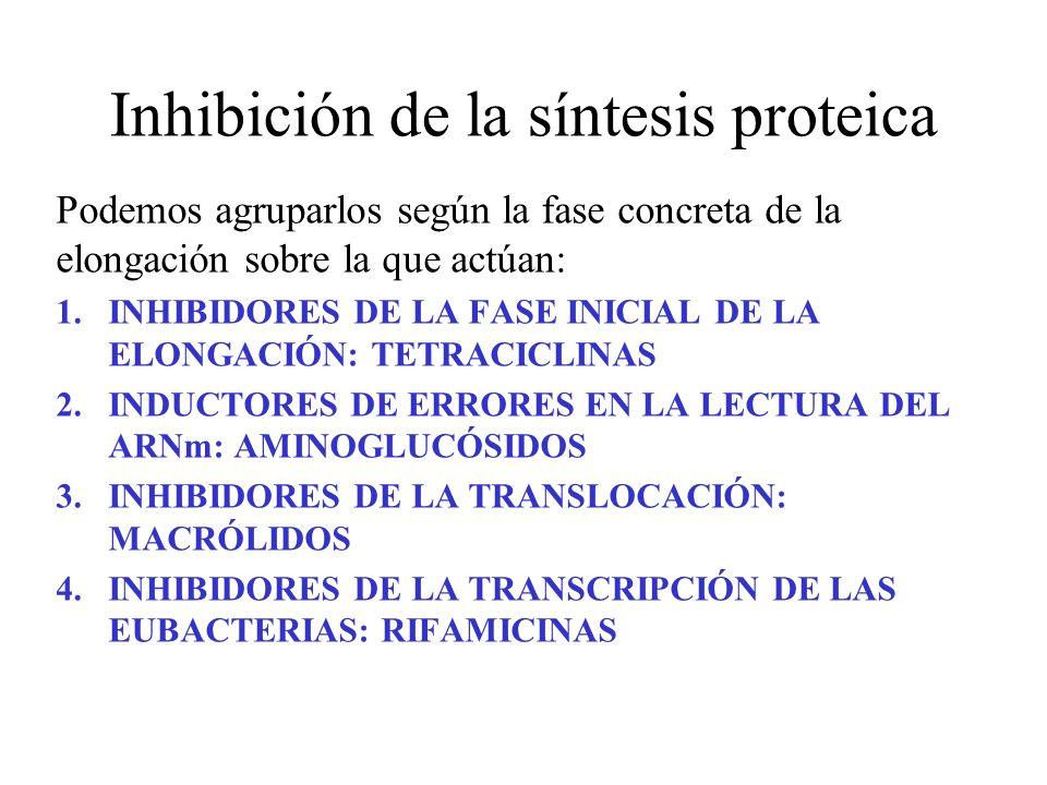 Inhibición de la síntesis proteica Podemos agruparlos según la fase concreta de la elongación sobre la que actúan: 1.INHIBIDORES DE LA FASE INICIAL DE