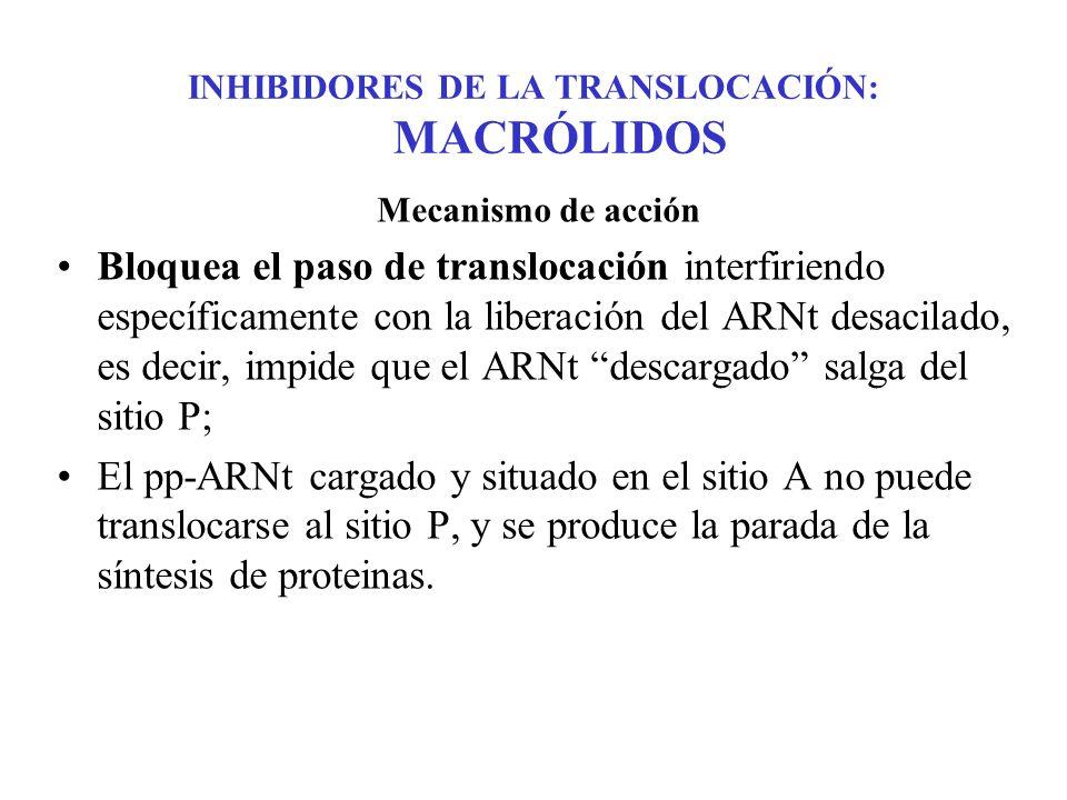 INHIBIDORES DE LA TRANSLOCACIÓN: MACRÓLIDOS Mecanismo de acción Bloquea el paso de translocación interfiriendo específicamente con la liberación del A