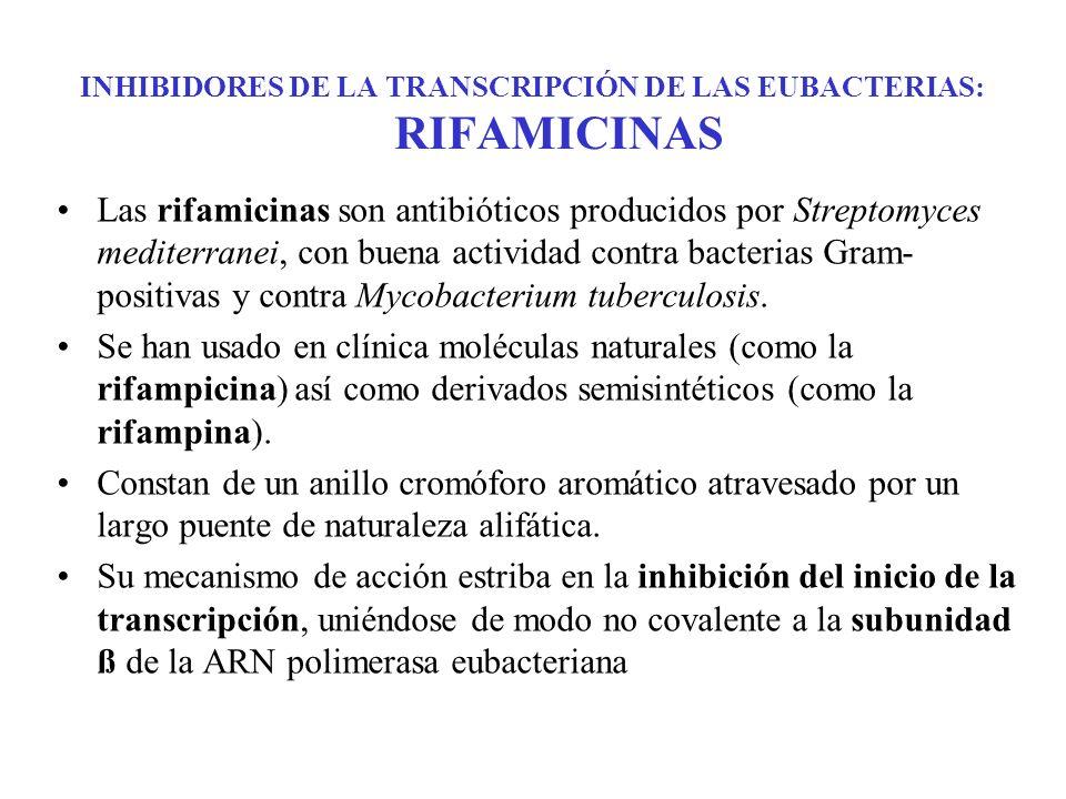 INHIBIDORES DE LA TRANSCRIPCIÓN DE LAS EUBACTERIAS: RIFAMICINAS Las rifamicinas son antibióticos producidos por Streptomyces mediterranei, con buena a
