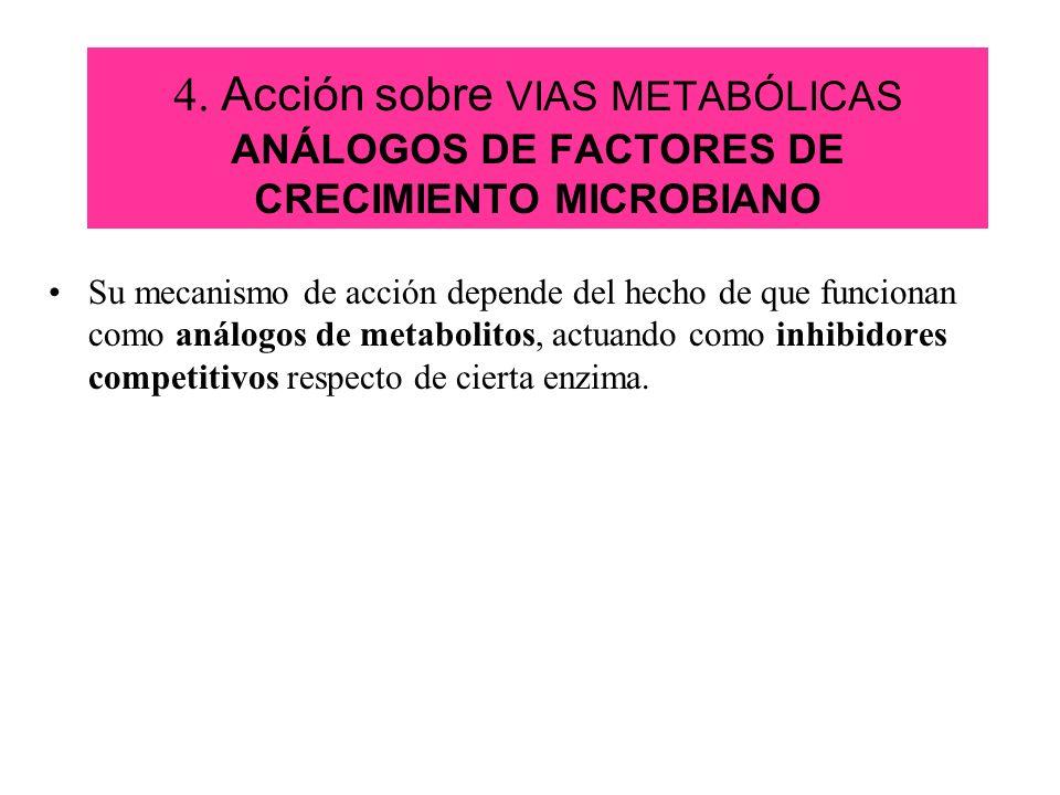 4. Acción sobre VIAS METABÓLICAS ANÁLOGOS DE FACTORES DE CRECIMIENTO MICROBIANO Su mecanismo de acción depende del hecho de que funcionan como análogo