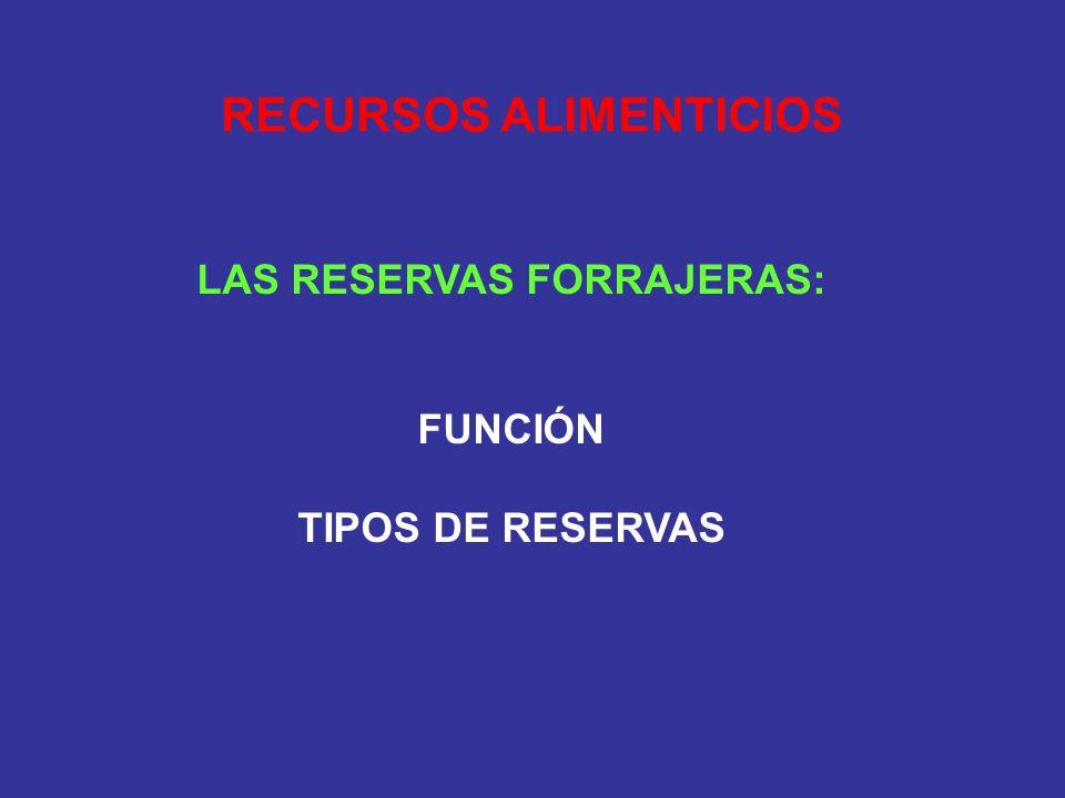 RECURSOS ALIMENTICIOS LAS RESERVAS FORRAJERAS: FUNCIÓN TIPOS DE RESERVAS