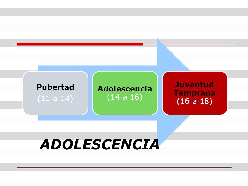 Pubertad (11 a 14) Adolescencia (14 a 16) Juventud Temprana (16 a 18) ADOLESCENCIA