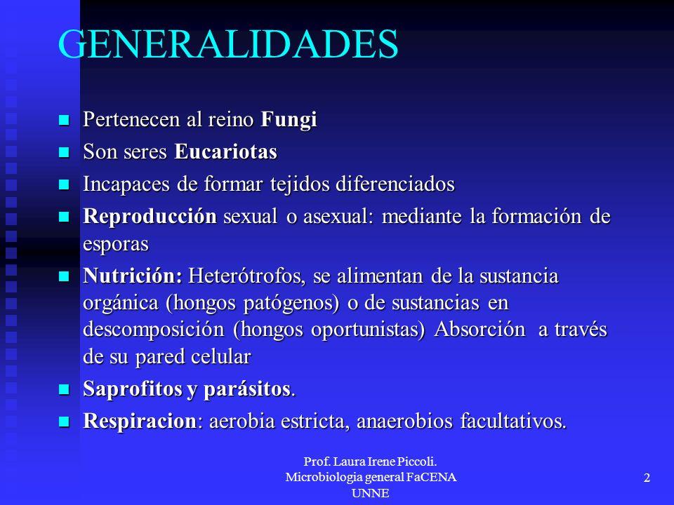 Prof. Laura Irene Piccoli. Microbiologia general FaCENA UNNE 2 GENERALIDADES Pertenecen al reino Fungi Pertenecen al reino Fungi Son seres Eucariotas