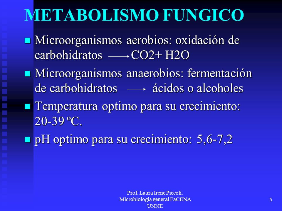 Prof. Laura Irene Piccoli. Microbiologia general FaCENA UNNE 5 METABOLISMO FUNGICO Microorganismos aerobios: oxidación de carbohidratos CO2+ H2O Micro