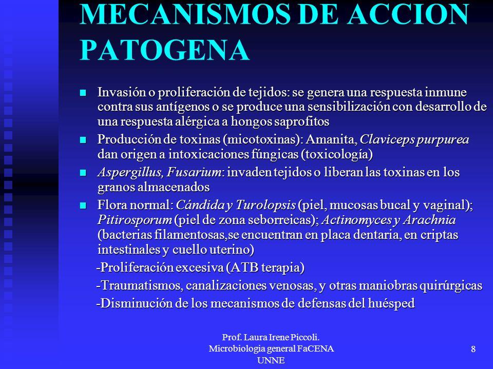 Prof. Laura Irene Piccoli. Microbiologia general FaCENA UNNE 8 MECANISMOS DE ACCION PATOGENA Invasión o proliferación de tejidos: se genera una respue