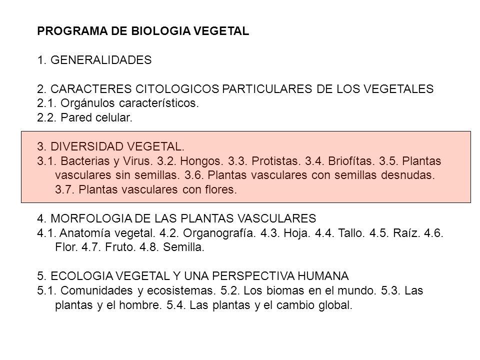 PROGRAMA DE BIOLOGIA VEGETAL 1. GENERALIDADES 2. CARACTERES CITOLOGICOS PARTICULARES DE LOS VEGETALES 2.1. Orgánulos característicos. 2.2. Pared celul