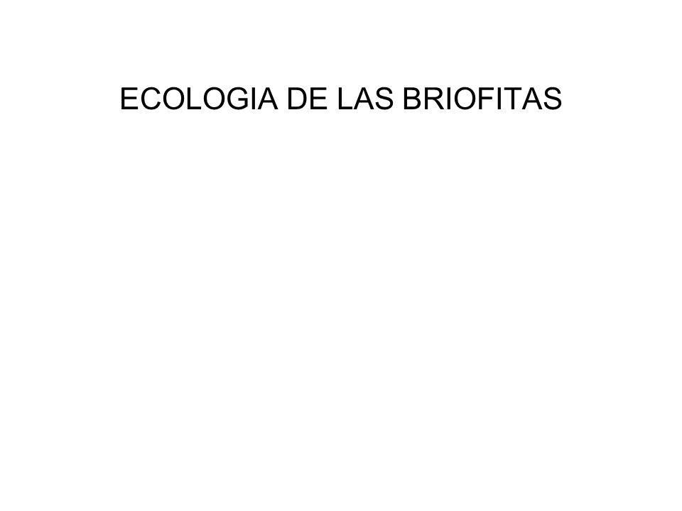 ECOLOGIA DE LAS BRIOFITAS
