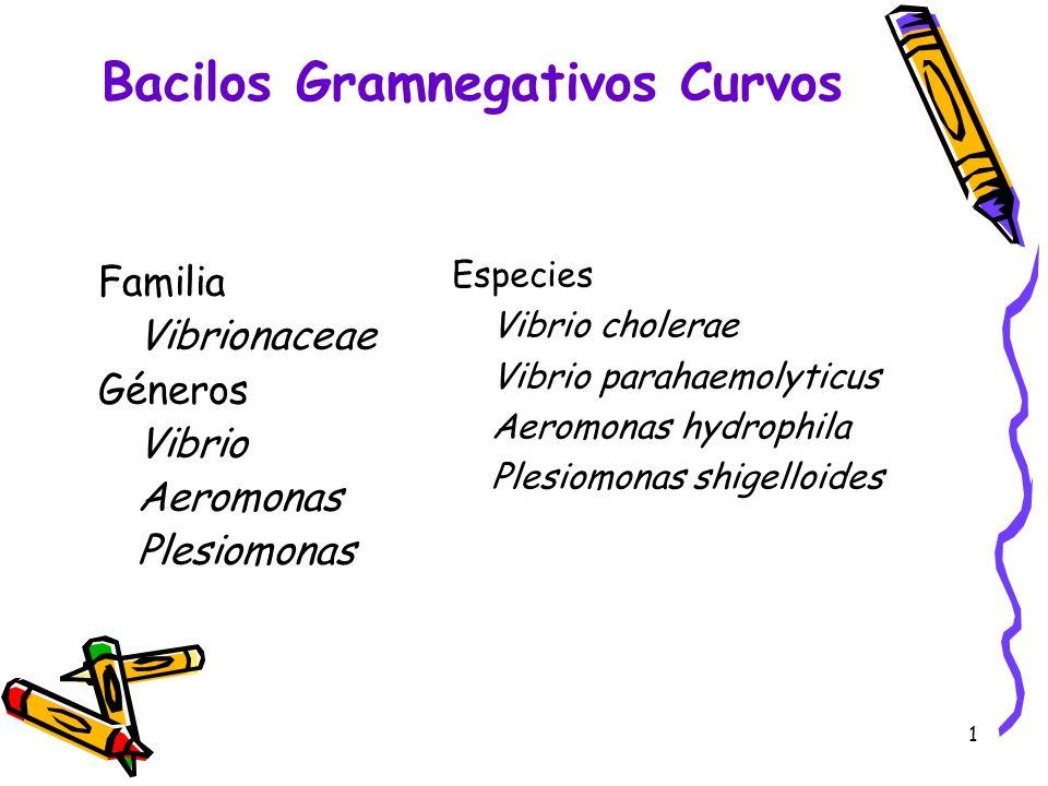 1 Familia Vibrionaceae Géneros Vibrio Aeromonas Plesiomonas Especies Vibrio cholerae Vibrio parahaemolyticus Aeromonas hydrophila Plesiomonas shigello