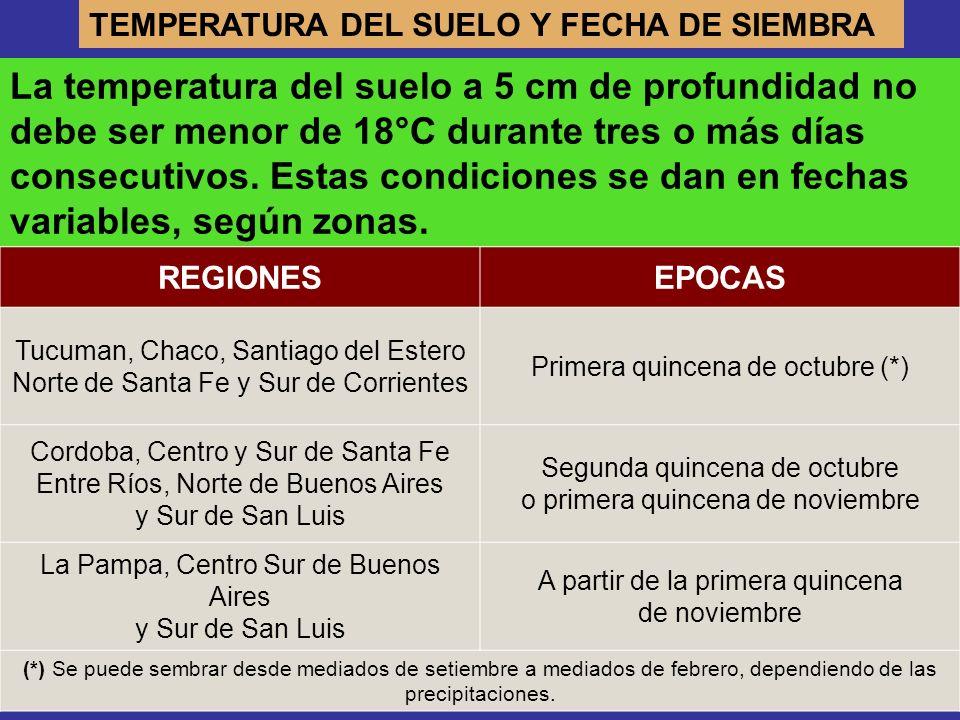 TEMPERATURA DEL SUELO Y FECHA DE SIEMBRA La temperatura del suelo a 5 cm de profundidad no debe ser menor de 18°C durante tres o más días consecutivos