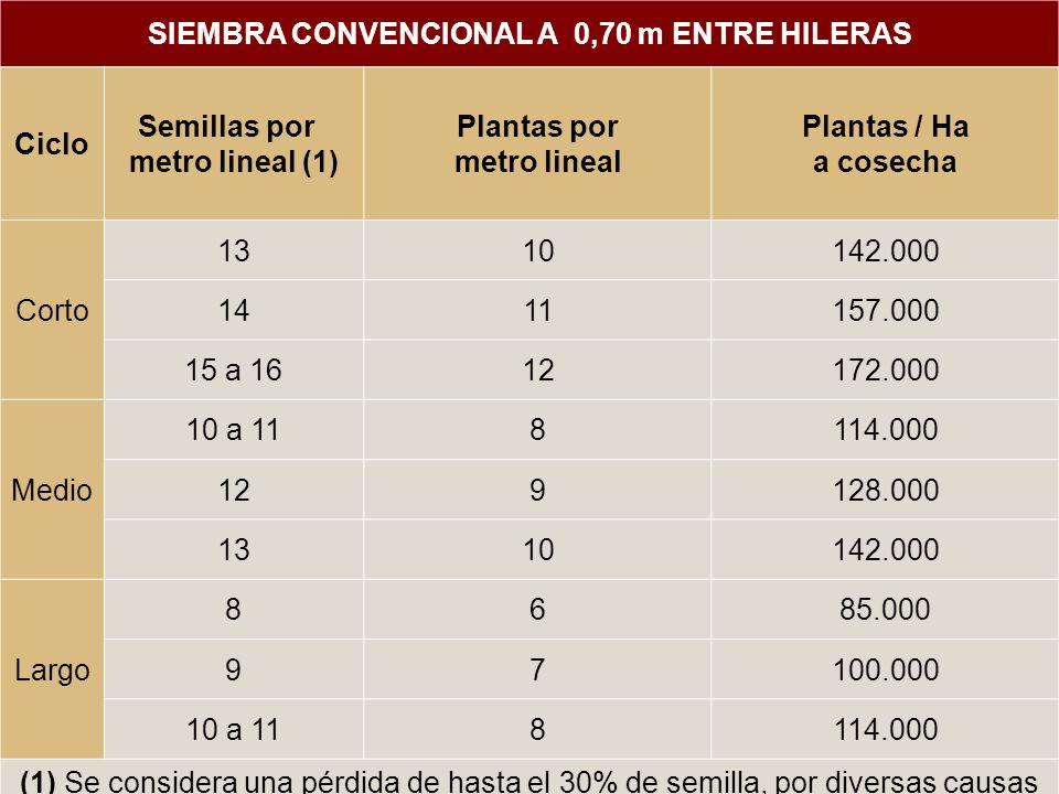 SIEMBRA CONVENCIONAL A 0,70 m ENTRE HILERAS Ciclo Semillas por metro lineal (1) Plantas por metro lineal Plantas / Ha a cosecha Corto 1310142.000 1411