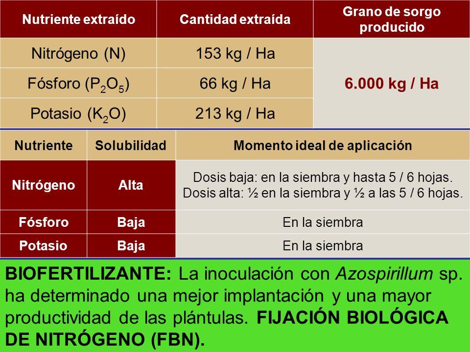 Nutriente extraídoCantidad extraída Grano de sorgo producido Nitrógeno (N)153 kg / Ha 6.000 kg / Ha Fósforo (P 2 O 5 )66 kg / Ha Potasio (K 2 O)213 kg
