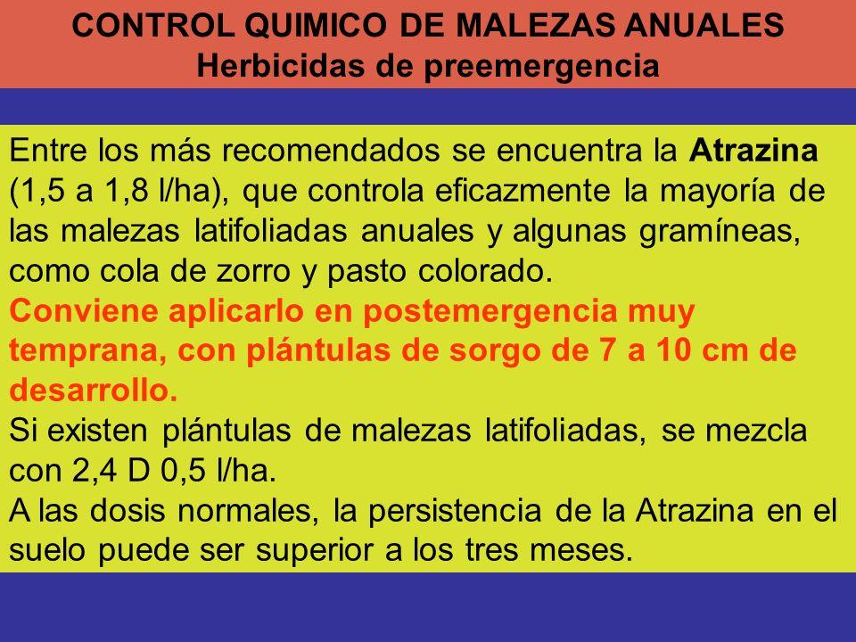 CONTROL QUIMICO DE MALEZAS ANUALES Herbicidas de preemergencia Entre los más recomendados se encuentra la Atrazina (1,5 a 1,8 l/ha), que controla efic