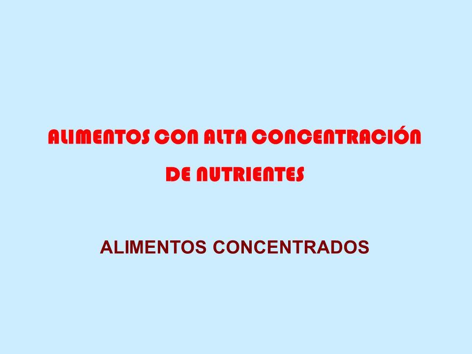 ALIMENTOS CON ALTA CONCENTRACIÓN DE NUTRIENTES ALIMENTOS CONCENTRADOS
