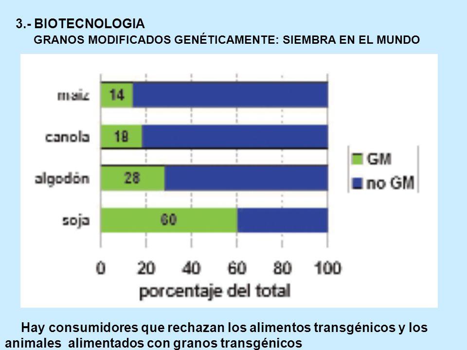 3.- BIOTECNOLOGIA GRANOS MODIFICADOS GENÉTICAMENTE: SIEMBRA EN EL MUNDO Hay consumidores que rechazan los alimentos transgénicos y los animales alimen