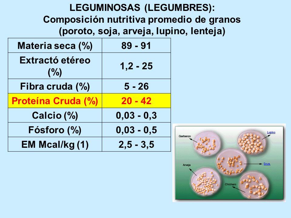 LEGUMINOSAS (LEGUMBRES): Composición nutritiva promedio de granos (poroto, soja, arveja, lupino, lenteja) Materia seca (%)89 - 91 Extractó etéreo (%)