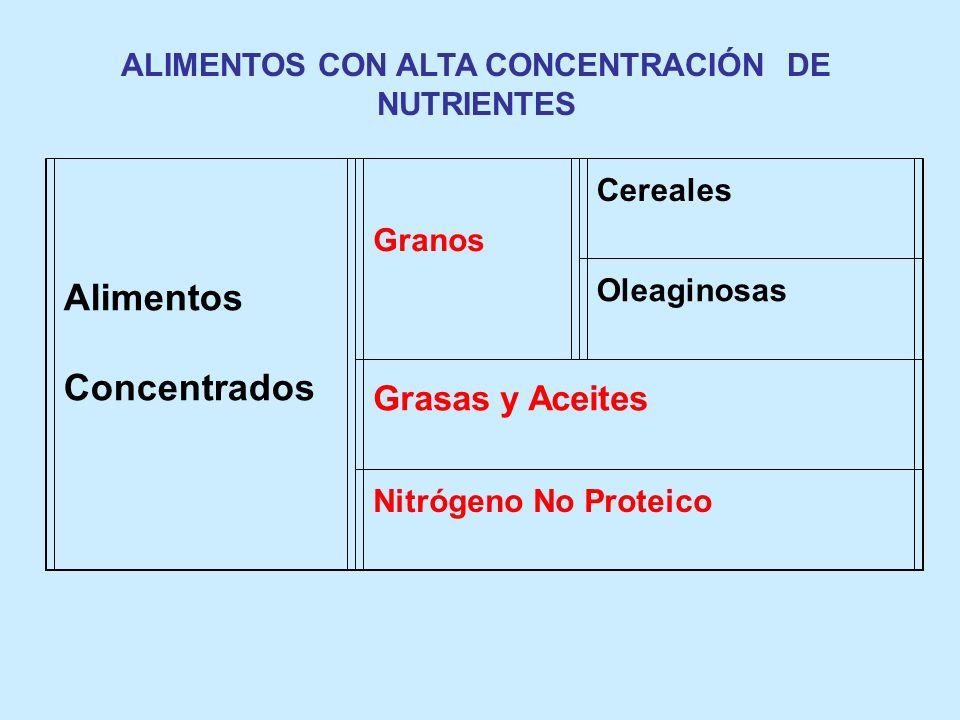Alimentos Concentrados Granos Cereales Oleaginosas Grasas y Aceites Nitrógeno No Proteico ALIMENTOS CON ALTA CONCENTRACIÓN DE NUTRIENTES