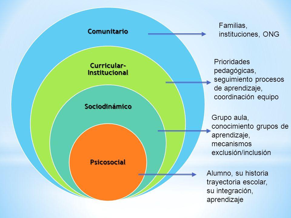 Comunitario Curricular- Institucional Sociodinámico Psicosocial Familias, instituciones, ONG Prioridades pedagógicas, seguimiento procesos de aprendiz