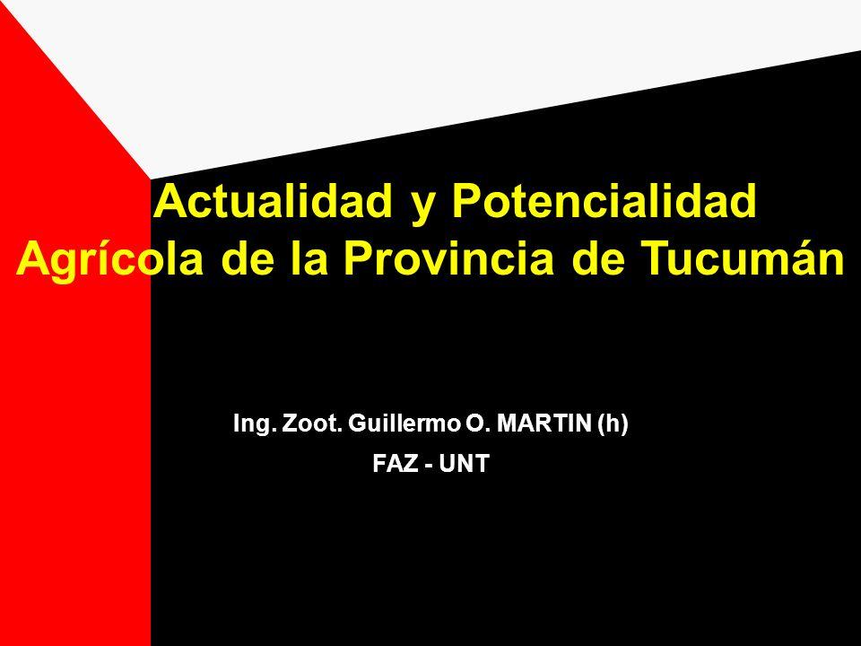 Actualidad y Potencialidad Agrícola de la Provincia de Tucumán Ing. Zoot. Guillermo O. MARTIN (h) FAZ - UNT
