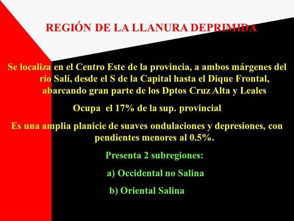 REGIÓN DE LA LLANURA DEPRIMIDA Se localiza en el Centro Este de la provincia, a ambos márgenes del río Salí, desde el S de la Capital hasta el Dique F