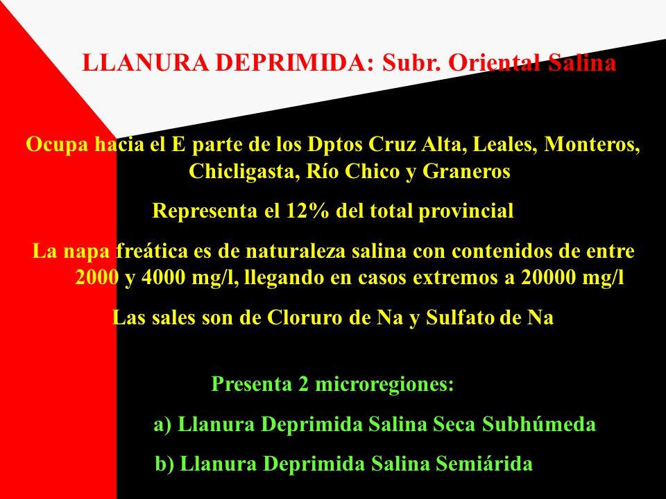 LLANURA DEPRIMIDA: Subr. Oriental Salina Ocupa hacia el E parte de los Dptos Cruz Alta, Leales, Monteros, Chicligasta, Río Chico y Graneros Representa