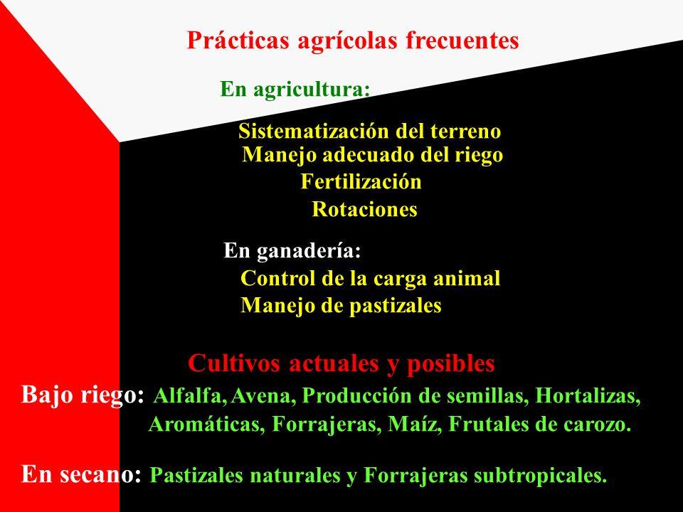 Prácticas agrícolas frecuentes En agricultura: Sistematización del terreno Manejo adecuado del riego Fertilización Rotaciones En ganadería: Control de