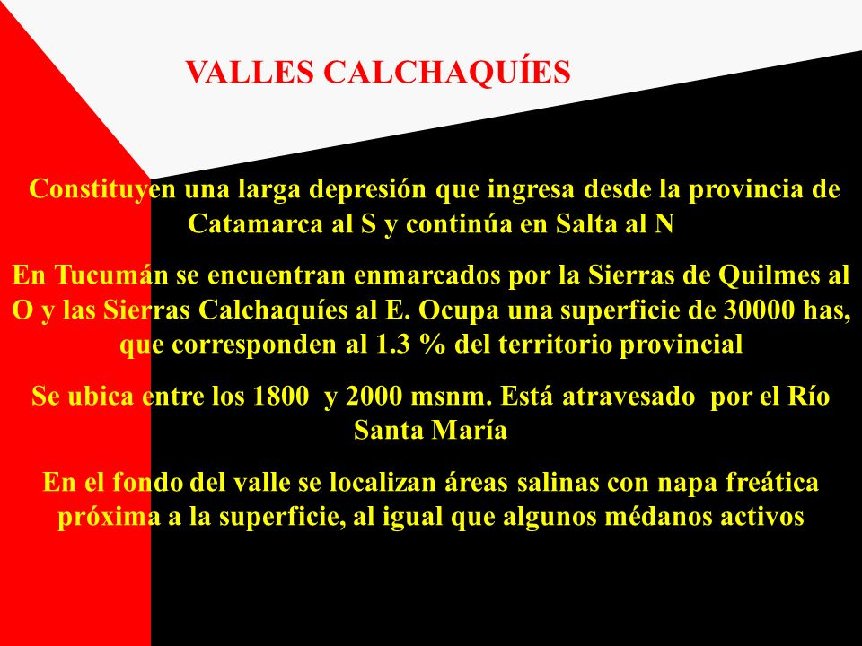 VALLES CALCHAQUÍES Constituyen una larga depresión que ingresa desde la provincia de Catamarca al S y continúa en Salta al N En Tucumán se encuentran