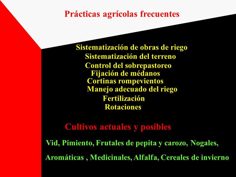 Prácticas agrícolas frecuentes Sistematización de obras de riego Sistematización del terreno Control del sobrepastoreo Fijación de médanos Cortinas ro