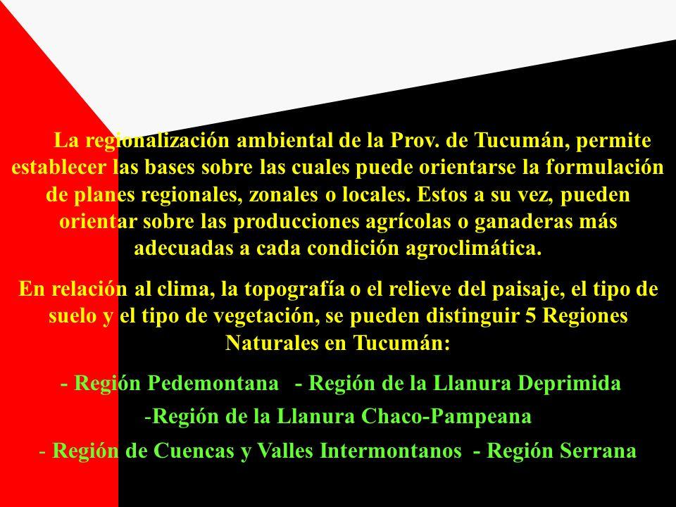 La regionalización ambiental de la Prov. de Tucumán, permite establecer las bases sobre las cuales puede orientarse la formulación de planes regionale