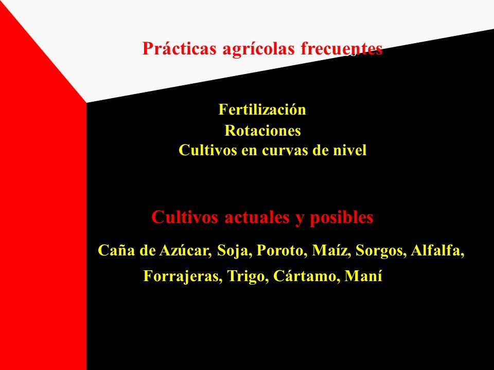 Prácticas agrícolas frecuentes Fertilización Rotaciones Cultivos en curvas de nivel Cultivos actuales y posibles Caña de Azúcar, Soja, Poroto, Maíz, S