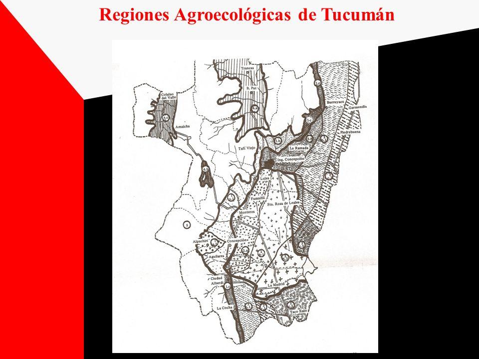 Regiones Agroecológicas de Tucumán