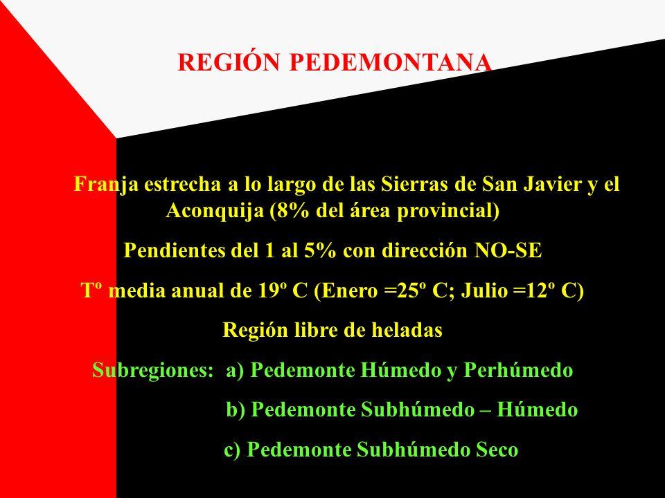 REGIÓN PEDEMONTANA Franja estrecha a lo largo de las Sierras de San Javier y el Aconquija (8% del área provincial) Pendientes del 1 al 5% con direcció