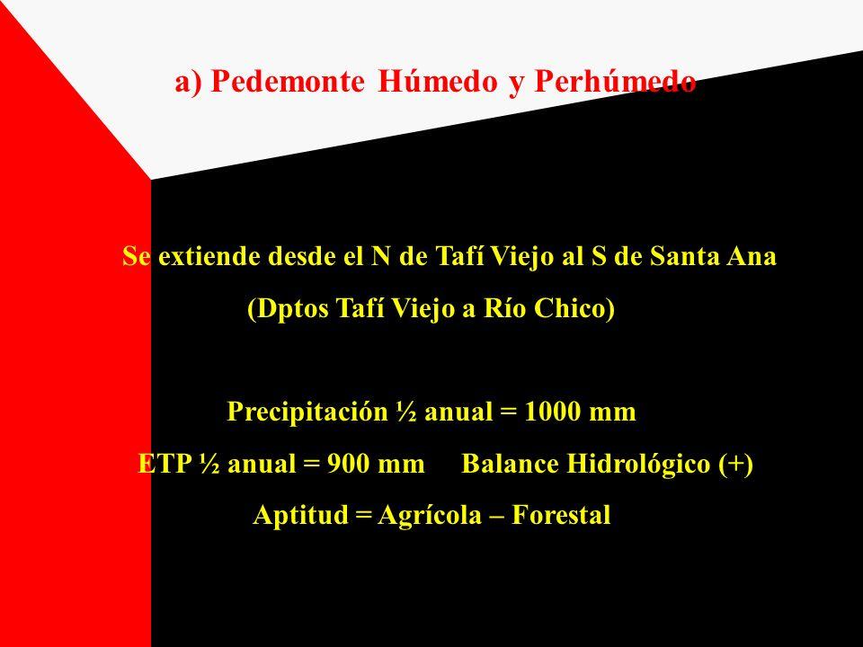 a) Pedemonte Húmedo y Perhúmedo Se extiende desde el N de Tafí Viejo al S de Santa Ana (Dptos Tafí Viejo a Río Chico) Precipitación ½ anual = 1000 mm