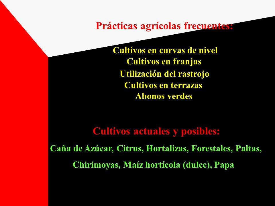 Prácticas agrícolas frecuentes Fertilización Rotaciones Cultivos en curvas de nivel Cultivos actuales y posibles Caña de Azúcar, Hortalizas de primicia (con riego), Citrus, Forrajeras, Forestales