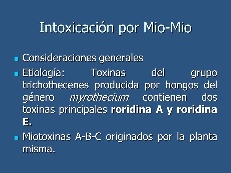 Consideraciones generales Consideraciones generales Etiología: Toxinas del grupo trichothecenes producida por hongos del género myrothecium contienen dos toxinas principales roridina A y roridina E.