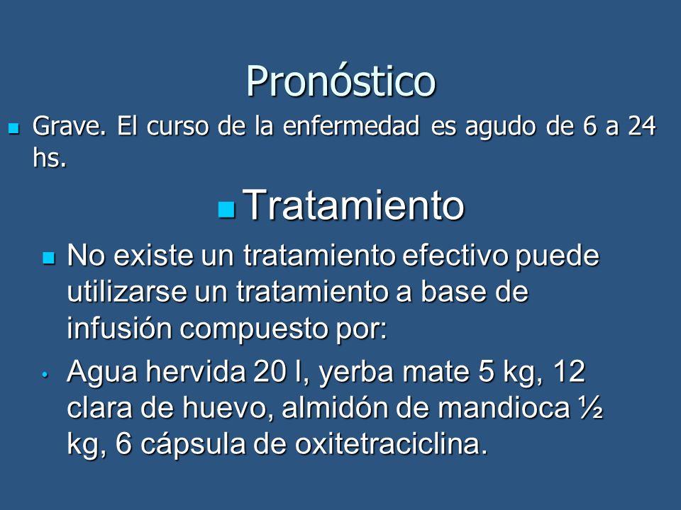 Pronóstico Tratamiento Tratamiento No existe un tratamiento efectivo puede utilizarse un tratamiento a base de infusión compuesto por: No existe un tr