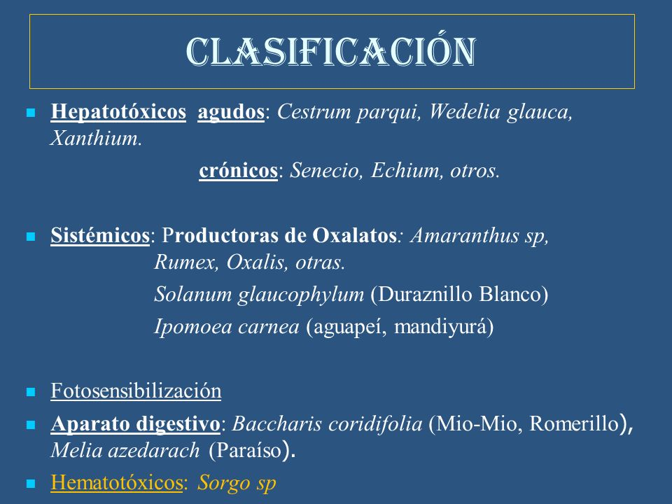 CLASIFICACIÓN Hepatotóxicos agudos: Cestrum parqui, Wedelia glauca, Xanthium.