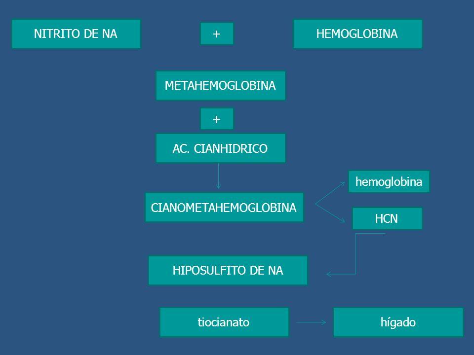 NITRITO DE NA HEMOGLOBINA + METAHEMOGLOBINA + AC. CIANHIDRICO CIANOMETAHEMOGLOBINA HIPOSULFITO DE NA hemoglobina HCN tiocianatohígado