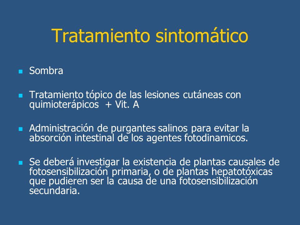Tratamiento sintomático Sombra Tratamiento tópico de las lesiones cutáneas con quimioterápicos + Vit.