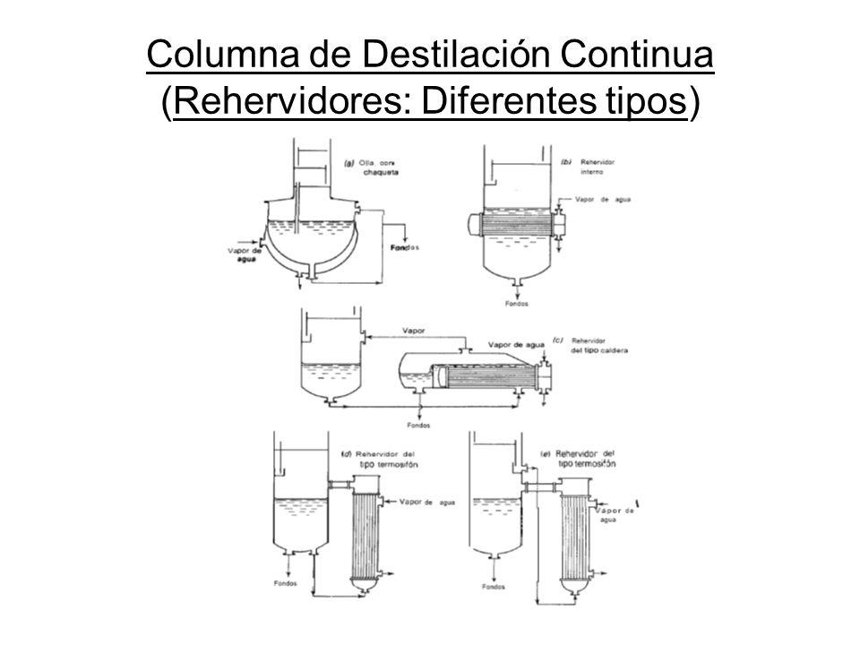Columna de Destilación Continua (Rehervidores: Diferentes tipos)