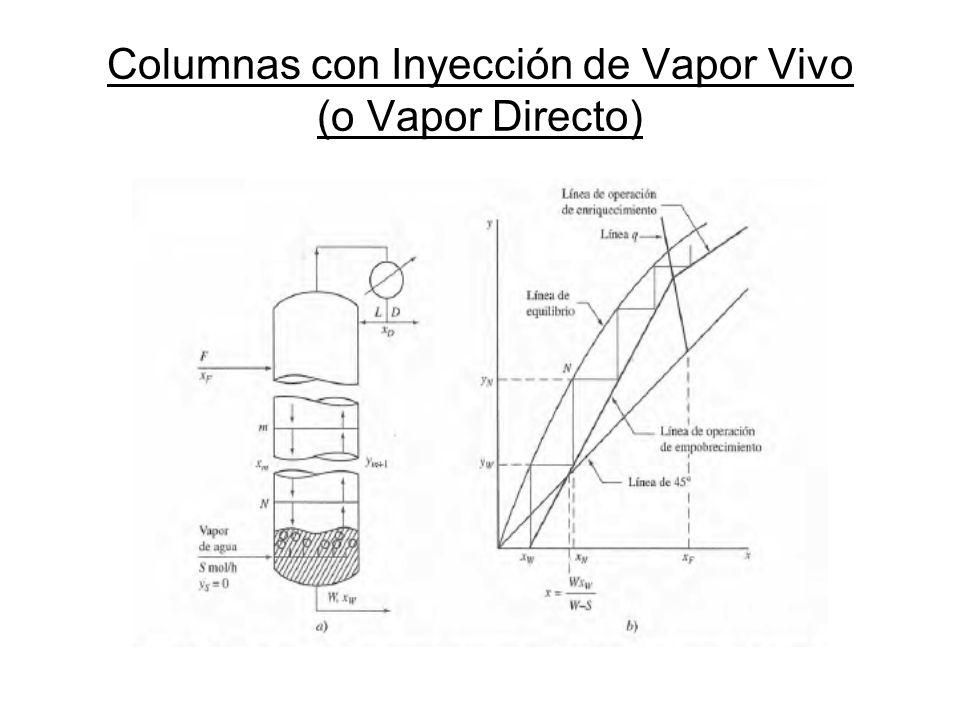 Columnas con Inyección de Vapor Vivo (o Vapor Directo)