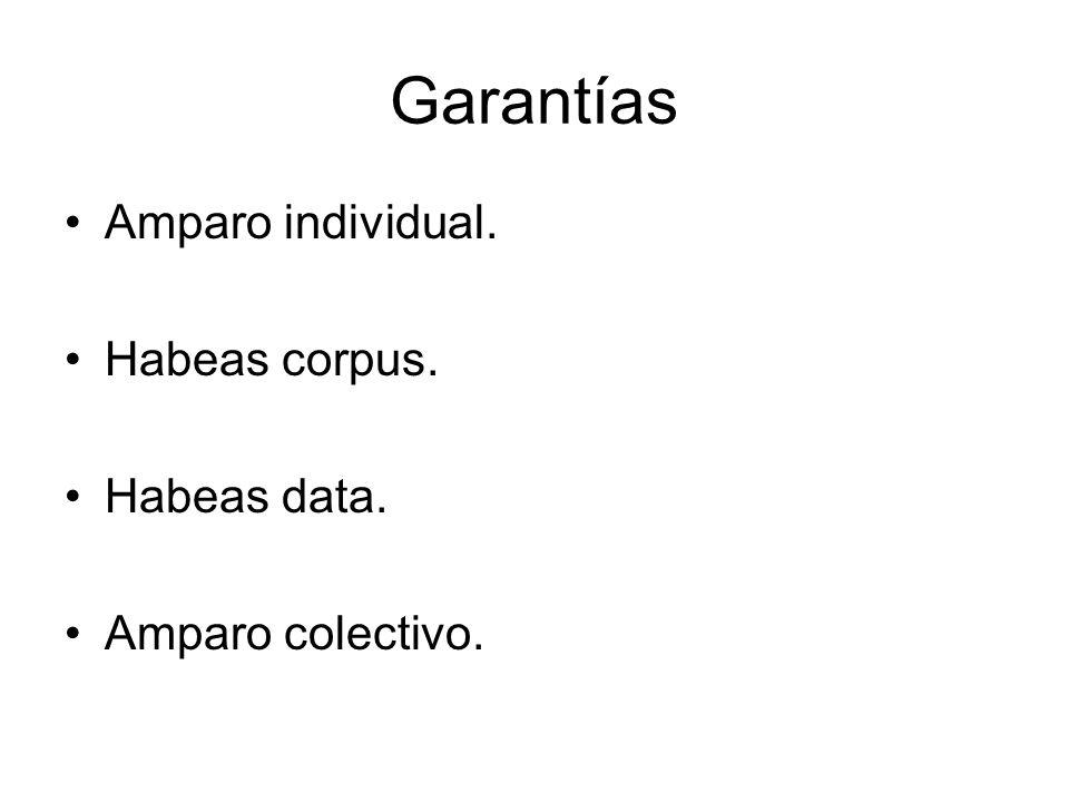 Garantías Amparo individual. Habeas corpus. Habeas data. Amparo colectivo.