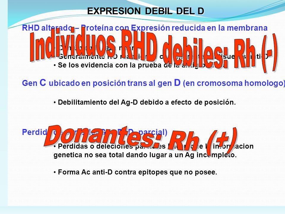 EXPRESION DEBIL DEL D RHD alterado – Proteína con Expresión reducida en la membrana Común en la raza negra Generalmente NO reaccionan con diferentes a