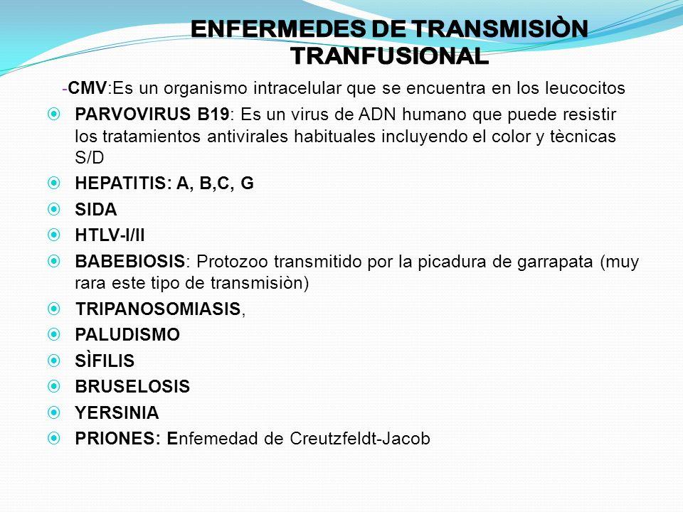 - CMV:Es un organismo intracelular que se encuentra en los leucocitos PARVOVIRUS B19: Es un virus de ADN humano que puede resistir los tratamientos an