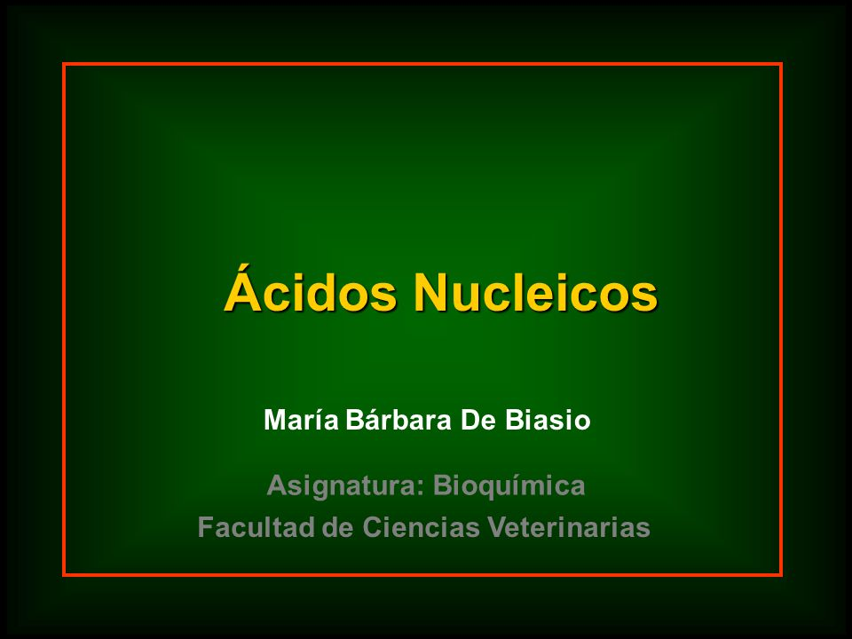 Ácidos Nucleicos María Bárbara De Biasio Facultad de Ciencias Veterinarias Asignatura: Bioquímica