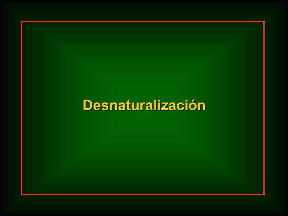 Desnaturalización
