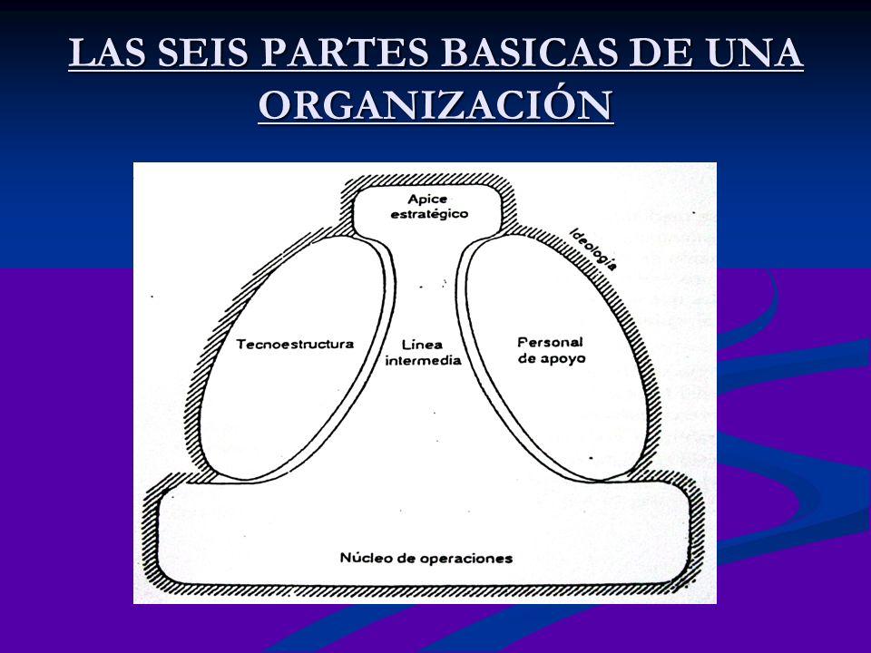 LAS SEIS PARTES BASICAS DE UNA ORGANIZACIÓN